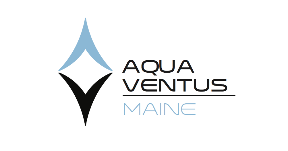 featured image for Maine Aqua Ventus February Newsletter